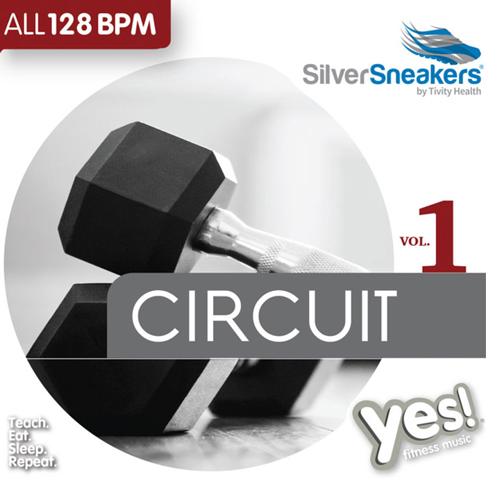 silver sneakers circuit workout