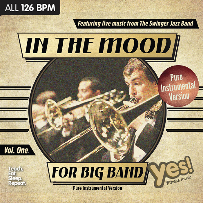 In The Mood For Big Band Vol  1 Pure Instrumental : Yes
